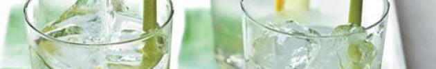Aperitivos y destilados