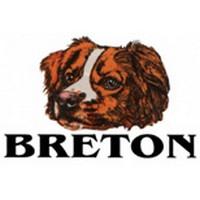 Breton Pizza