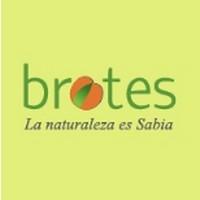 Brotes