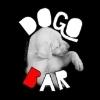 Dogo Bar